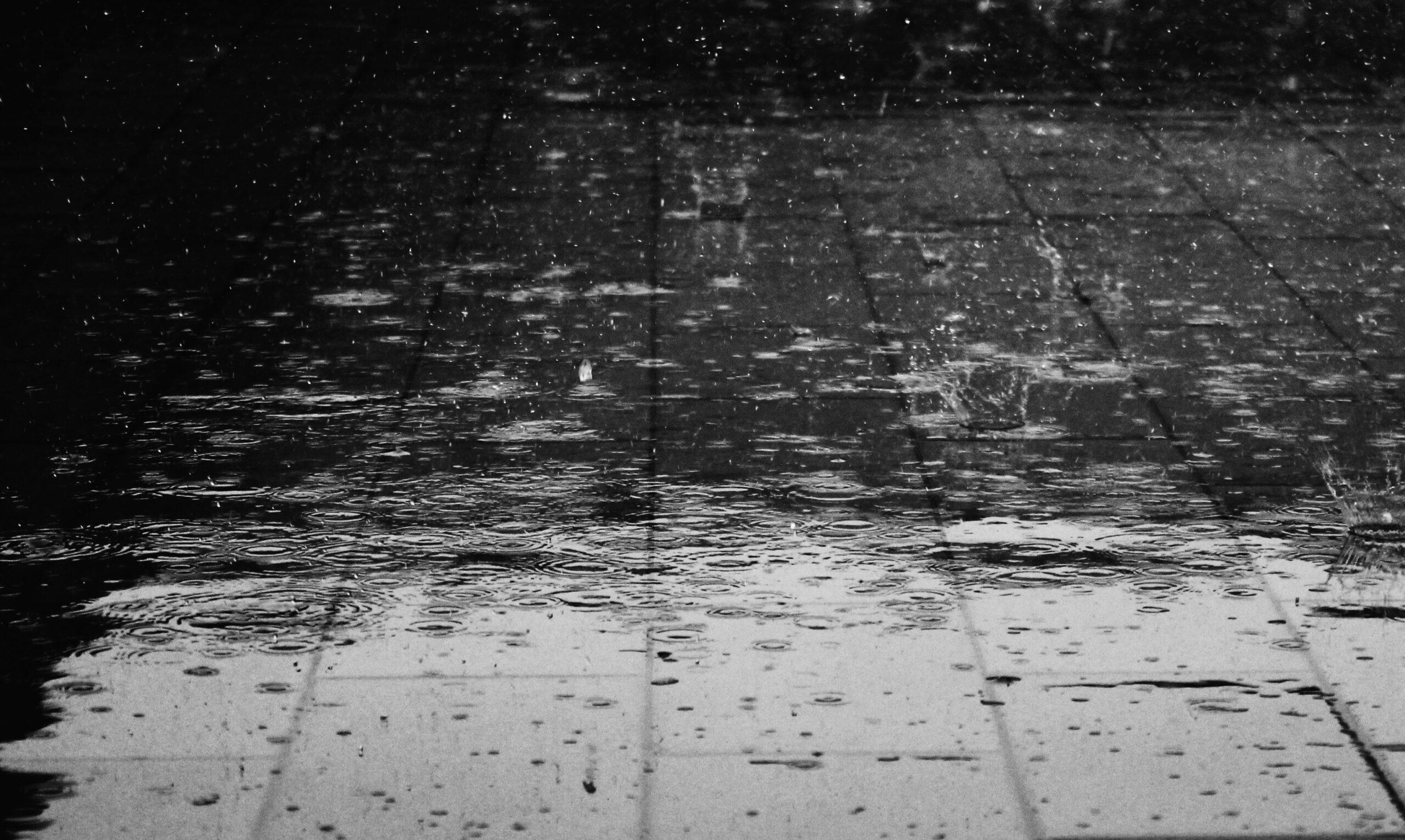Дождови – Наталија Наумовска (видео рецитација)