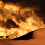 Пустина
