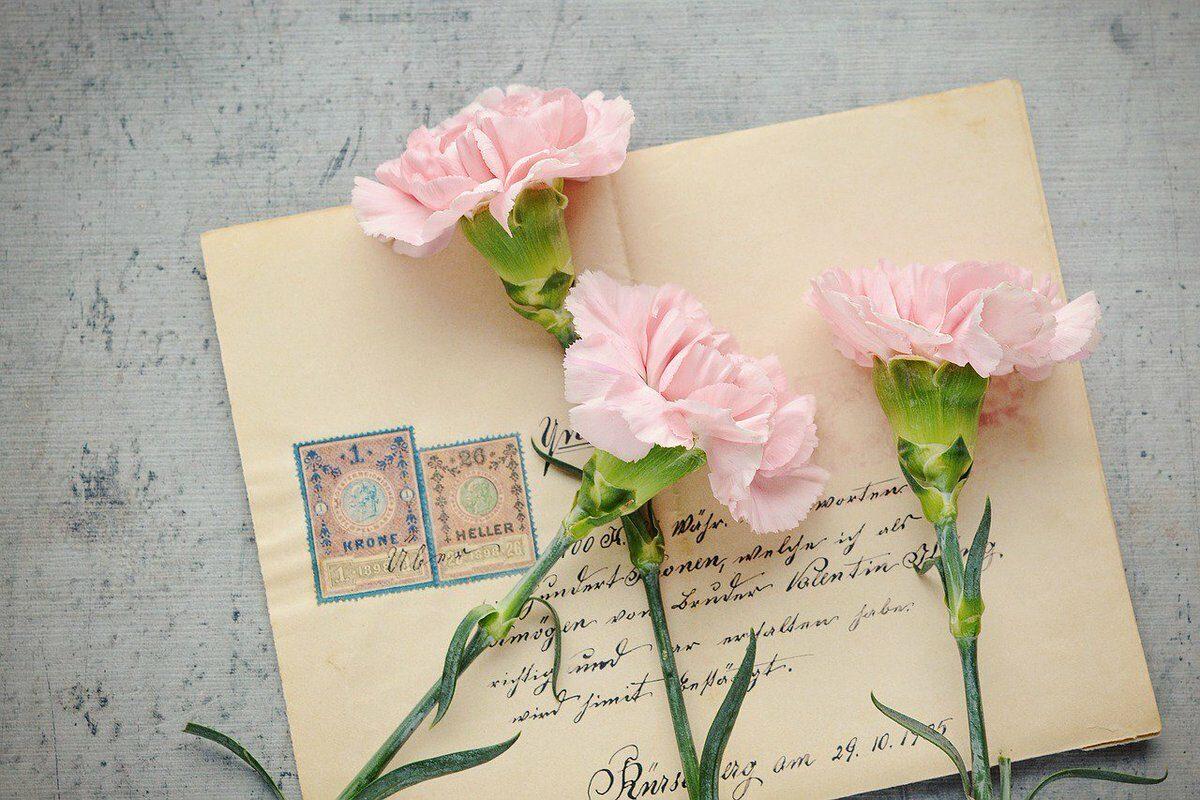 Писмо до мојата помала сестра