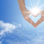 Мудри животни цитати кои ќе ве наполнат со позитивна енергија