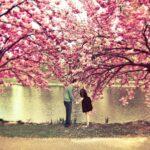 Пролетна мечта - Гане Тодоровски