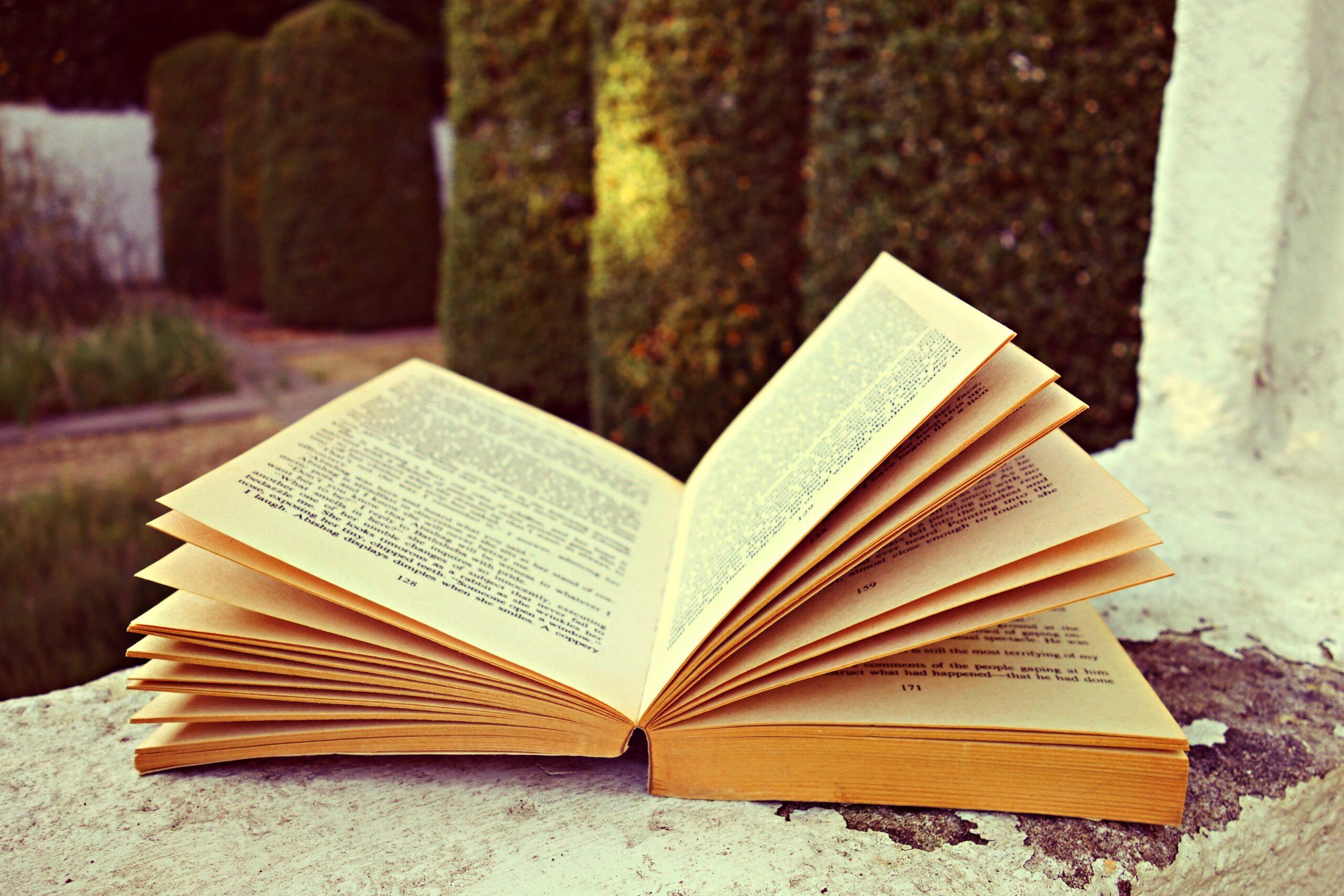 Која е улогата на првите реченици во книгите и кои се најпознатите први реченици од светската книжевност?