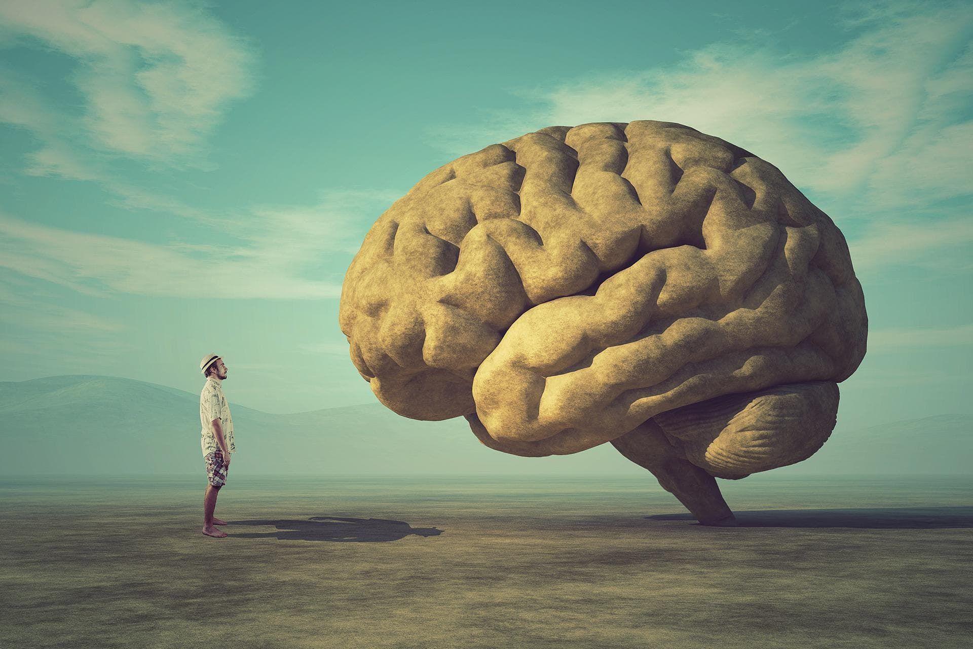 Лоша и добра страна на меморијата: Што се случува при помнењето?
