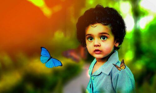 Јован Јовановиќ – Змаj – Дете и пеперутка