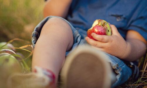Јаболче (песна за деца)