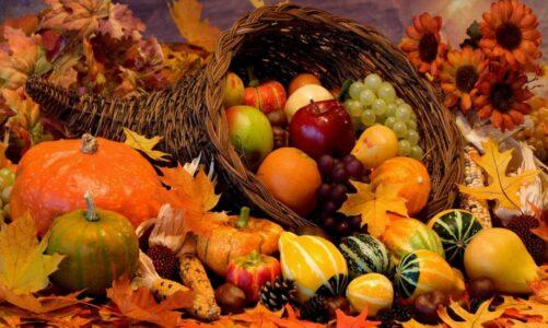 Есенски плодови – Ненад Џамбазов