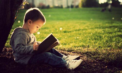 Книгата е живот – Стојан Тарапуза