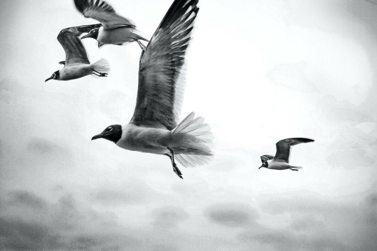 Што значи простувањето и зошто треба да простуваме?