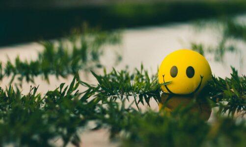 Можеш, ако веруваш дека можеш: Текст за мотивација и оптимизам