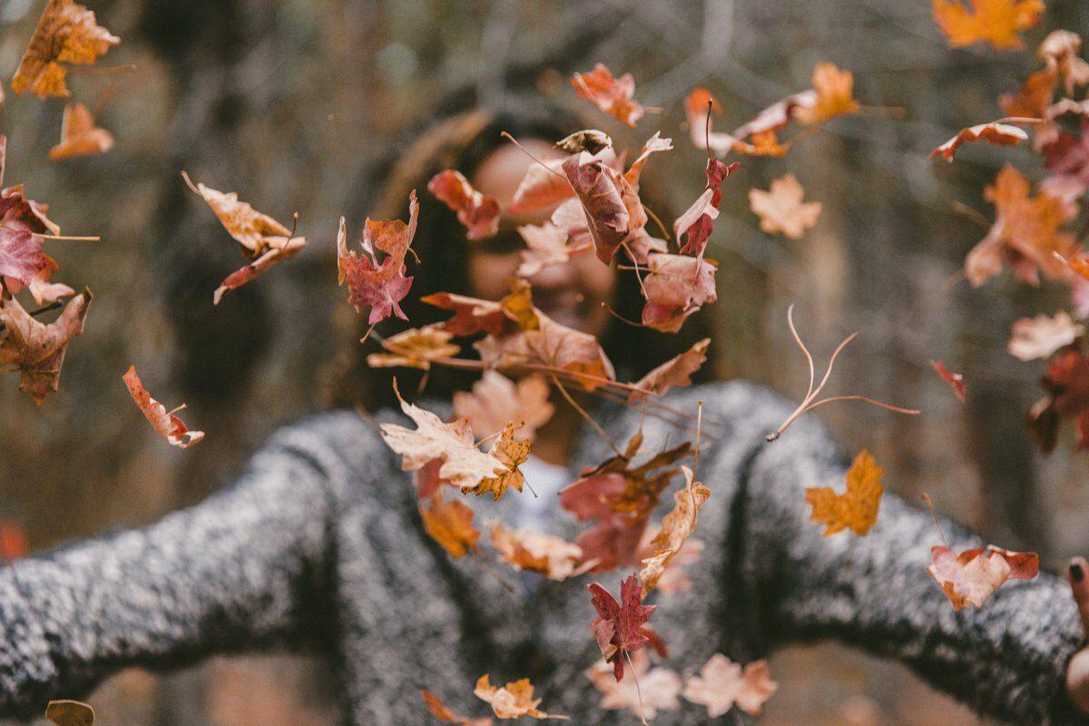 Сонцето отиде чекор назад, лисјата заспаа, а есента се разбуди – Дијана Станчевска