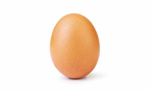 Јајце – Енди Вир