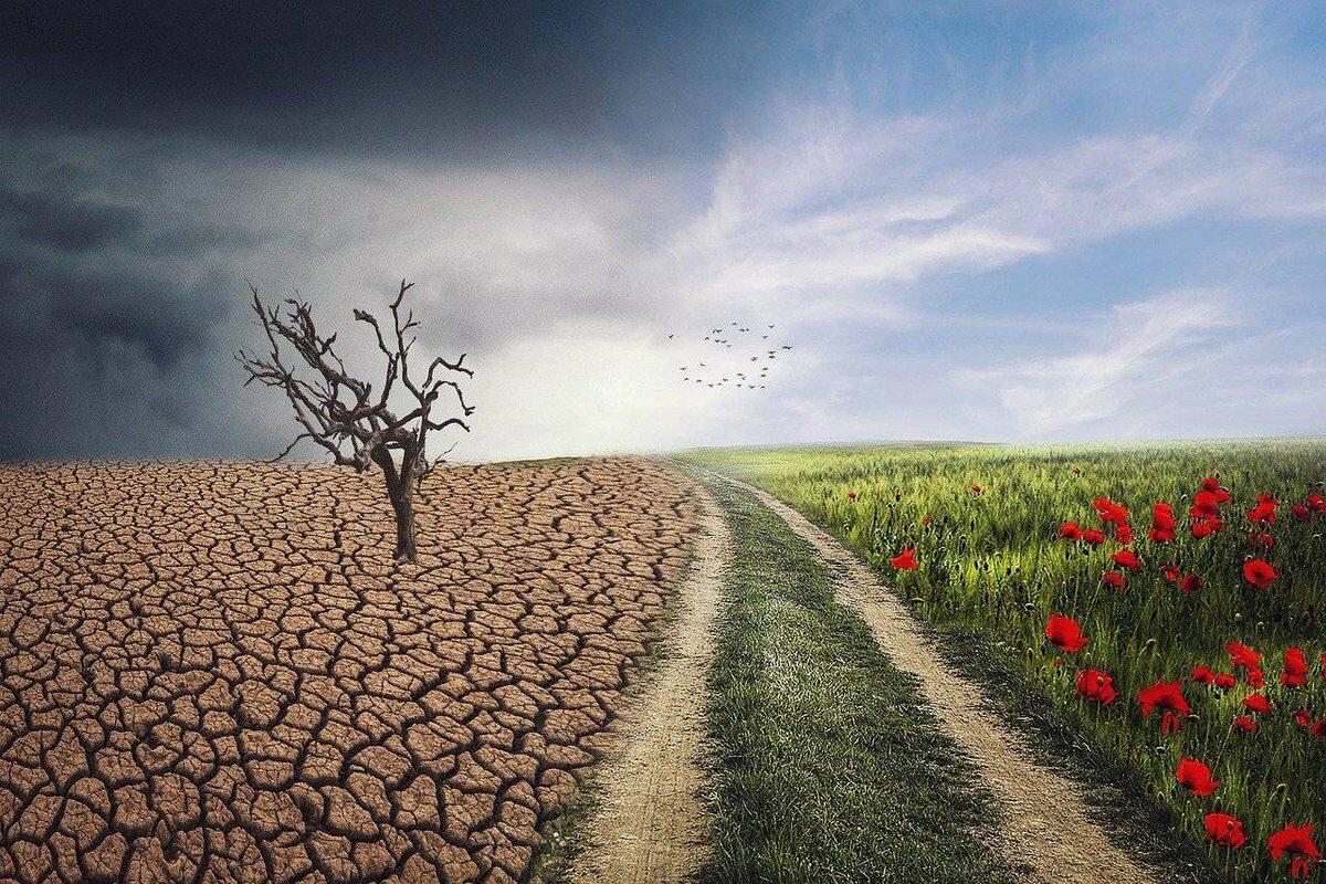 """19 мисли за промената: """"Планината ќе ја помести само оној кој на почетокот ги поместувал камчињата"""""""