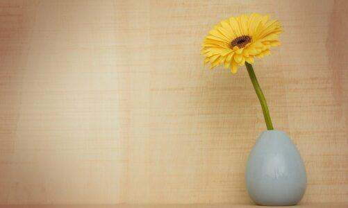 7 животни принципи за успех, остварување цели и креирање реалност