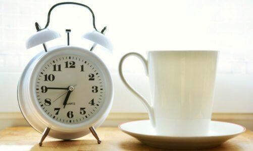 Часовникот што чука – Наталија Наумовска