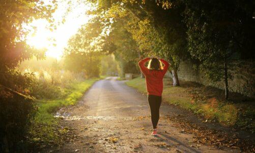 Духовната моќ на шетањето