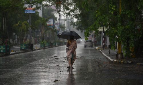 """За потеклото на зборот """"дожд"""""""