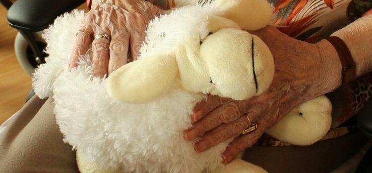 Приказна за една мудра баба и нејзините внучиња