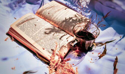 """Започна фестивалот на чајот и читањето организиран од """"Феникс"""""""