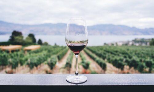 Легендата за настанокот на виното и факти за него