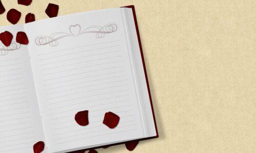 Остатоци од дневникот – Благица Наумова