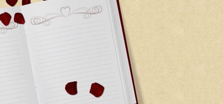 Остатоци од дневникот - Благица Наумова