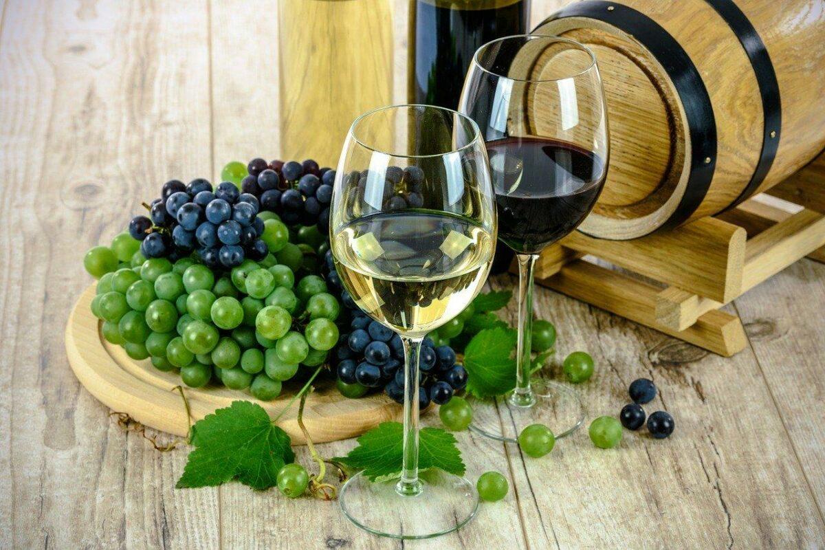Рапсодија за Виното - СП Апостол