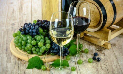 Рапсодија за Виното – СП Апостол