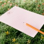 16 цитати за животни промени, почетоци и успех кои се извор на мотивација